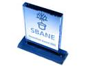 2007 SBANE New England Innovation Award